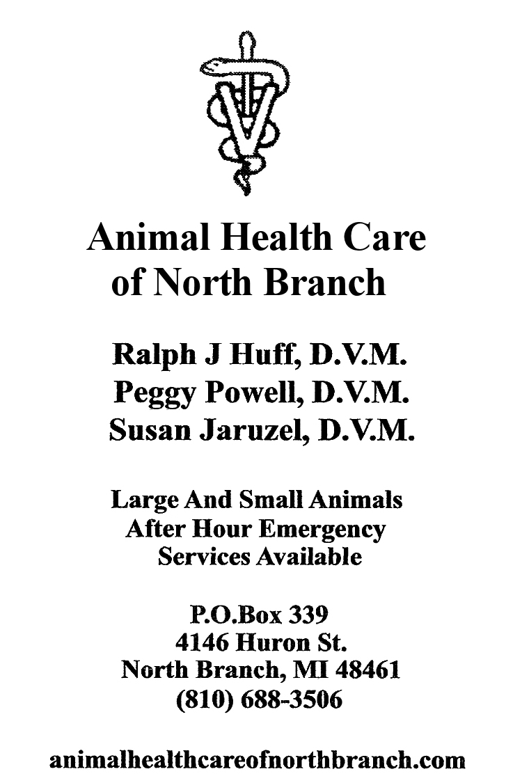 Animal Health Care of North Branch